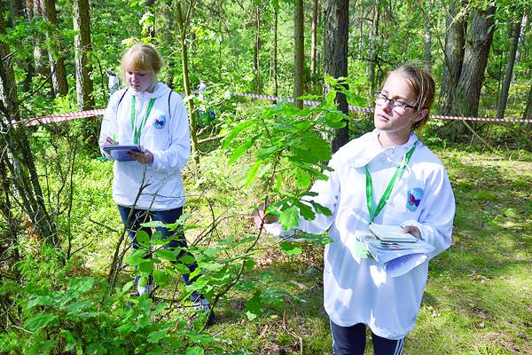 Экологи исследуют