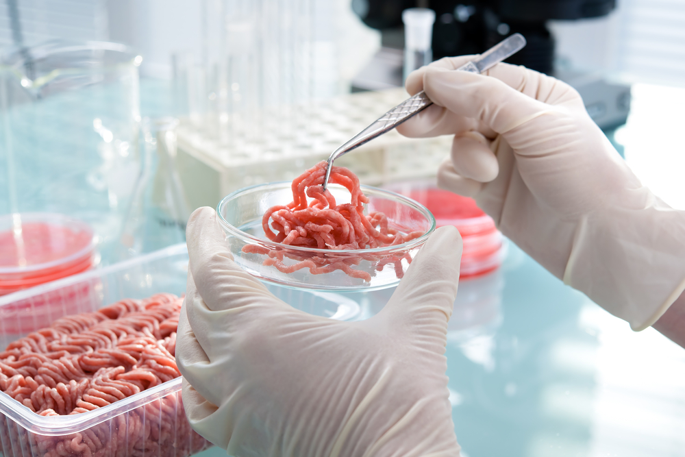 проверка мясного изделия