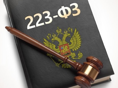 Электронные торговые площадки по 223 Федеральному закону фото