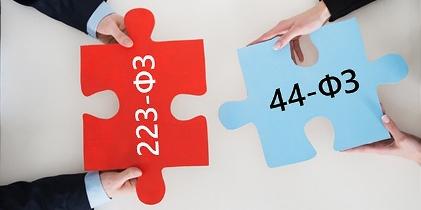 Закупкипо44-ФЗ и223-ФЗ фото
