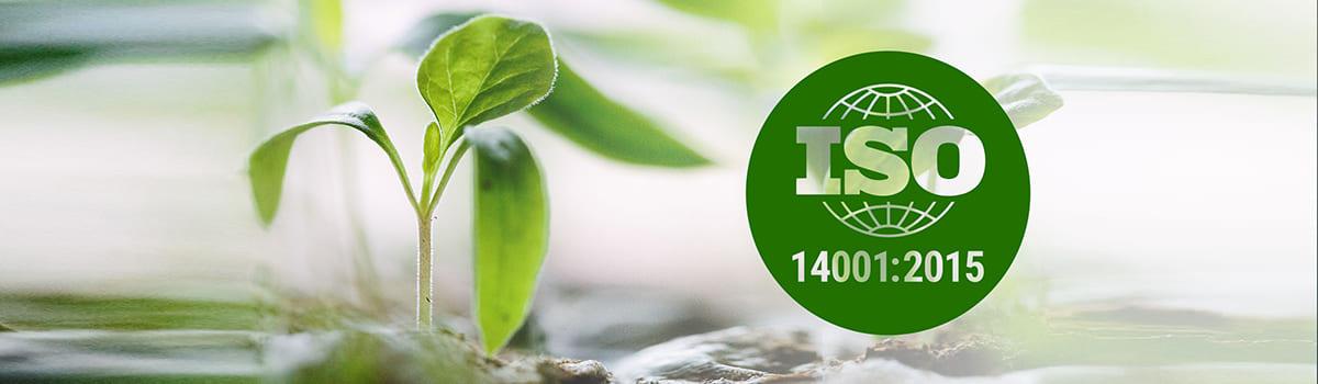 системы экологического менеджмента 14001